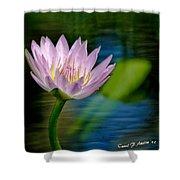 Purple Petals Lotus Flower Impressionism Shower Curtain
