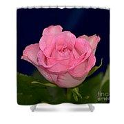Pink Mist 8498 Shower Curtain