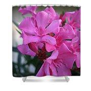 Pink Oleander Bunch Shower Curtain