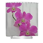 Pink Orchids 1 Shower Curtain
