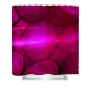 Pink Passion Shower Curtain