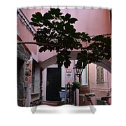 Pink Patio Shower Curtain