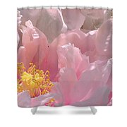 Pink Peonies 2  Shower Curtain