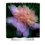 Pink Peony Flower Shower Curtain