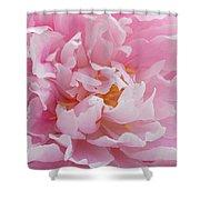 Pink Peony Flower Waving Petals  Shower Curtain
