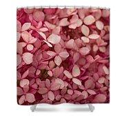 Pink Petal Shower Curtain