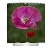 Pink Poppy. Shower Curtain
