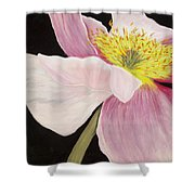 Pink Poppy Shower Curtain