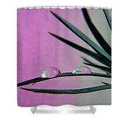 Pink Rain Drops Shower Curtain