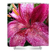 Pink Rain Speckled Lily Shower Curtain