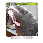 Pink Ribboned Grey Shower Curtain