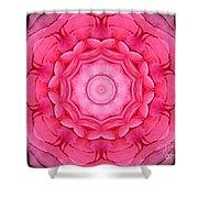 Pink Rose Bouquet Kaleidoscope Shower Curtain