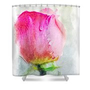 Pink Rose Bud - Digital Paint II Shower Curtain