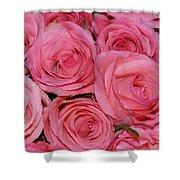 Pink Rose Closeup Shower Curtain