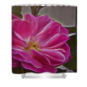 Pink Rose Digital Art 2 Shower Curtain