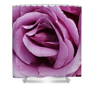 Pink Rose Flower Shower Curtain