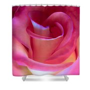 Pink Rose Pedals Shower Curtain