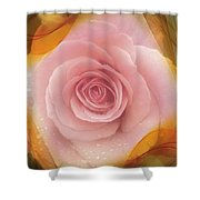 Pink Rose Romance  Shower Curtain