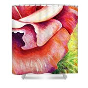 Pink Rose Two Panel Four Of Four Shower Curtain