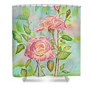 Pink Roses And Bud Shower Curtain