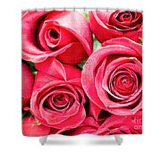 Pink Roses Flowers  Shower Curtain