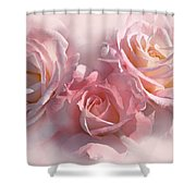 Pink Roses In The Mist Shower Curtain