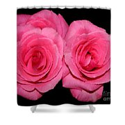 Pink Roses With Brush Stroke Effects Shower Curtain
