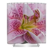 Pink Spotted Lily Shower Curtain