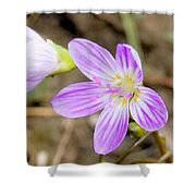 Pink Spring Beauty Shower Curtain