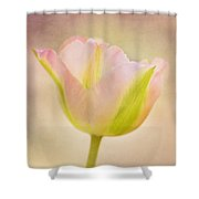 Pink Spring Dreams Shower Curtain