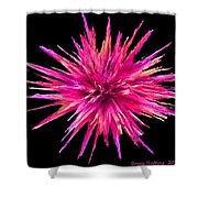 Pink Star Crystal Shower Curtain