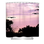 Pink Sunrise Geese Silhouette Shower Curtain