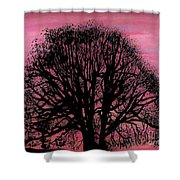 Pink Sunset Tree Shower Curtain