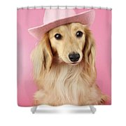 Pink Times Shower Curtain by Greg Cuddiford