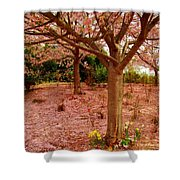 Pink Tones Shower Curtain