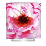 Pink Tourmaline Palm Springs Shower Curtain by William Dey