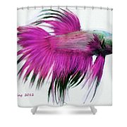 Pink Tropical Fish Shower Curtain