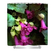 Pink Trumpets Shower Curtain