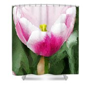Pink Tulip - A Digital Painting Shower Curtain