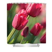 Pink Tulip Dream Shower Curtain