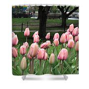 Pink Tulip Patch Shower Curtain