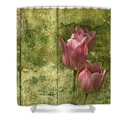 Pink Tulips And Old Clock Shower Curtain