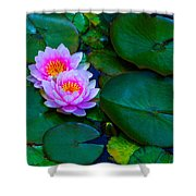Pink Water Lilies - Lotus Shower Curtain