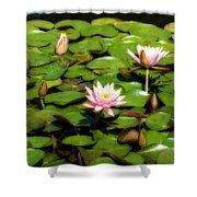 Pink Water Lilies Soft Focus Shower Curtain