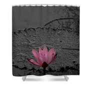Pink Water Lilly Shower Curtain