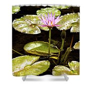 A Waterlily Reflection Shower Curtain