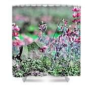Pink Wildflowers Shower Curtain