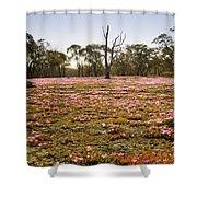 Pink Wildflowers Shower Curtain