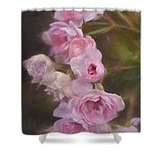 Pink Winter Roses One Shower Curtain
