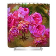Pink Winter Roses Three Shower Curtain